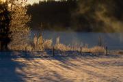 Vinterlandskap i eftermiddagsdis