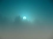 Solsiluett i blågrön dimma